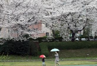 Arcebispo de Tóquio: oportunid...